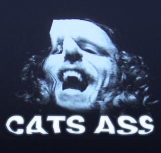 Cats ass